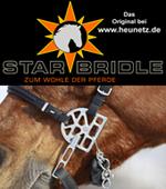 Starbridle